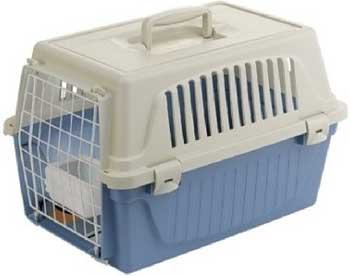 Кошки и собаки переезжают на дачу